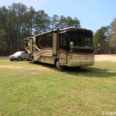 Boondocking Site Review – Kelly's Pond, Sam Houston National Forest, TX