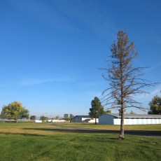 CP Campground Review – Tulelake-Butte Valley Fairgrounds, Tulelake, CA