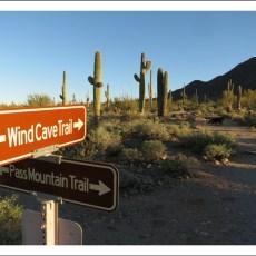 Prickly Galore & Desert Adventures -> Usery Mountain Regional Park, AZ