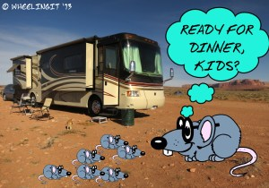 RV dinner anyone?