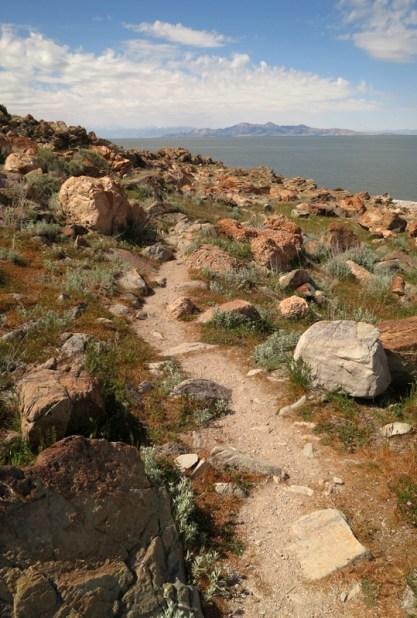 C-20130430 Antelope Island (19) (JPG)