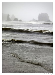 Lovely Bandon in the fog