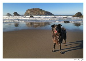 Polly poses on gorgeous Harris State Beach