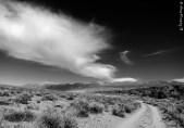 Desolate & gorgeous