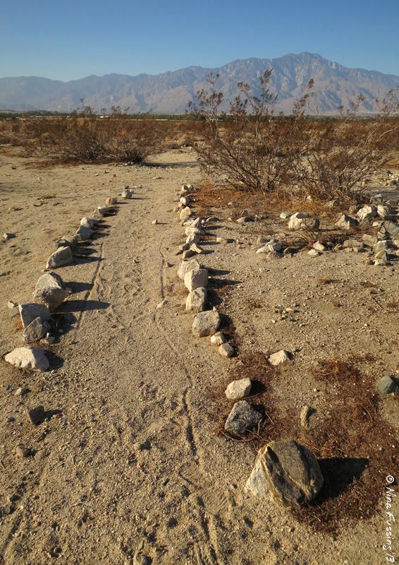 Random trails in the desert