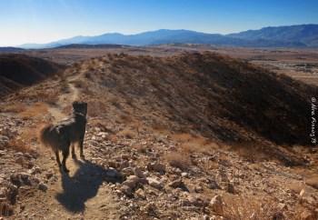 I just wanna hike!