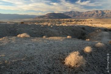 View towards Clark Dry Lake