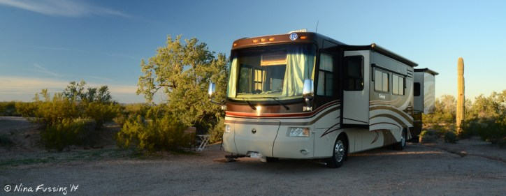 Our new boondocking site...with our very own Saguaro cactus!!