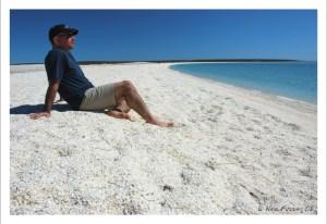 Have you ever seen beach like this?? Shell Beach, Australia