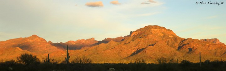 Late light on the mountains at Organ Pipe