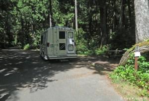 View down wooded C-loop. Pull-in site C11.