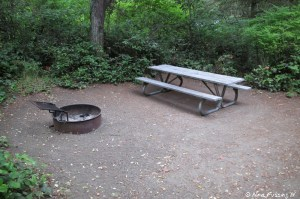 View of the picnic table and fire-pit at our site #42. We had a rather small sitting area.