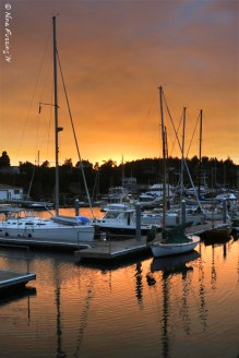 The marina bathes in an brilliant sunset