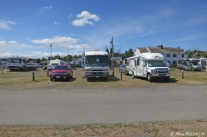 View from front of entry sites. RV on left in 339, RV on right in 340.