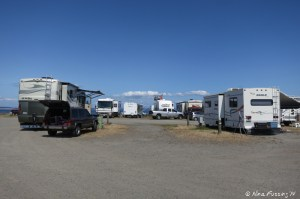 "View looking behind our RV to back sites. RV on left in site 301, on right 303 and they are both ""hidden"" from the water view by the row of RV's in front (sites 307-311)"