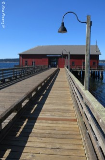 The old Coupeville Wharf (1905)