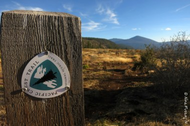 The one and only Pacific Crest Trail