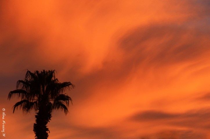 A sunset of swirling lava