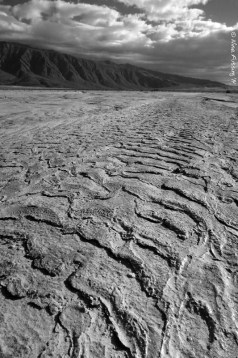 Textures of water past