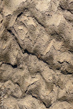 Textures of the lake bed II