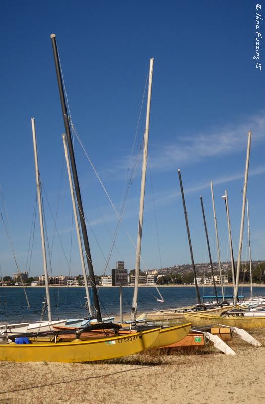 Boating, anyone?