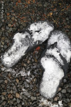 Flip flops post hail storm