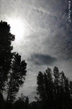 Afternoon sun & cloud