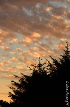 Cape D clouds