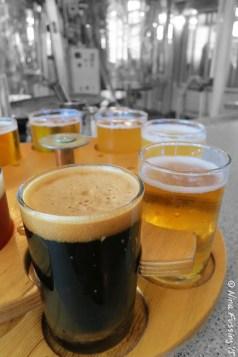 Flight of Snake River beers