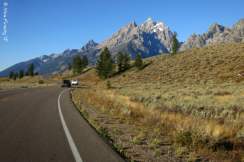 Early AM on the Teton Loop Drive