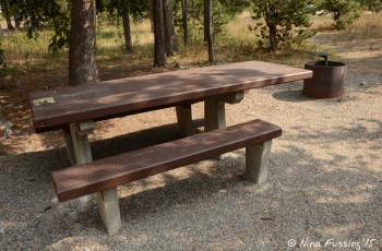 """View of typical """"sitting area"""" with picnic table and fire-pit"""