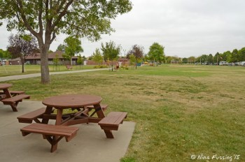 View of one of the many green spaces around the park. Restaurant is in the background on the left.