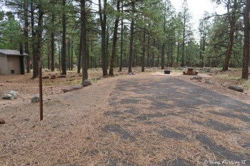 "Group Camping Area. Sites here look identical to the regular loop sites. Only difference is there are communal ""sitting areas"". This is #79."