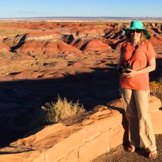 Exploring An Artists Palette – The Painted Desert, AZ