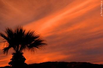 Winding down to my last few warm desert sunsets