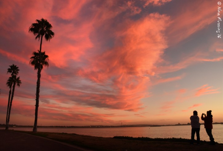 This is one of the reasons I love Mission Bay