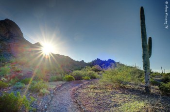 One of the many trails at Picacho Peak