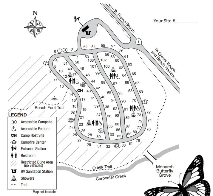 Map of Pismo Beach Campground from official brochure.