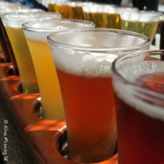 Beer Pilgrimage (And A Touch Of Cheese Please) – Petaluma, CA