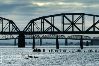 It's a city of many bridges