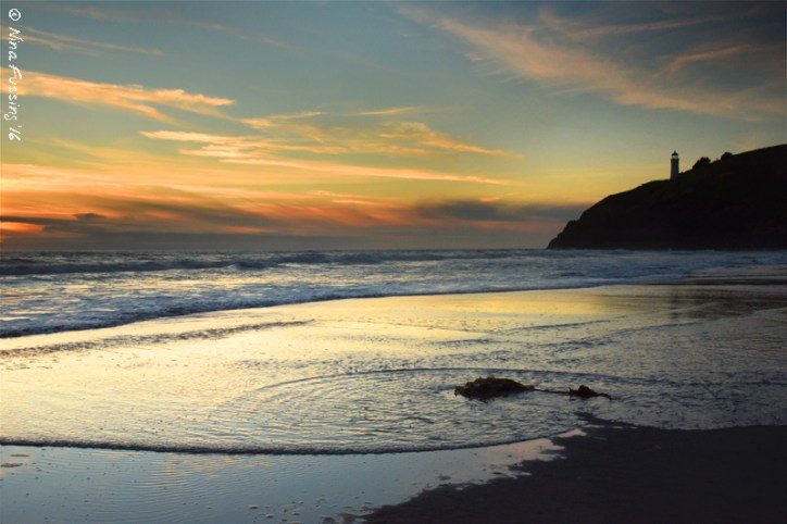 Final evening on the coast. Perfection!