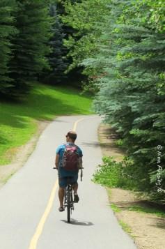 Wood River Trail biking