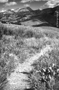 Adams Gultch mountains