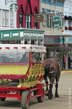 Starbucks & horse carriages on Mackinac Island
