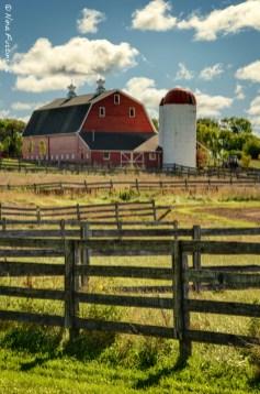 Old Barns & Fences