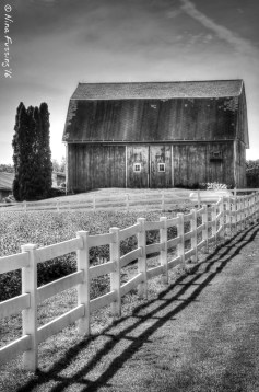 Barns & Fences in BW