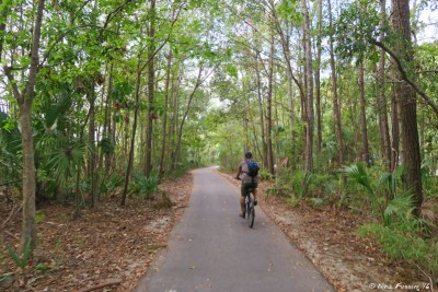 View of one of many miles of hiking/biking trails in the park