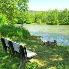 SP Campground Review – Shenandoah River State Park, Bentonville, VA