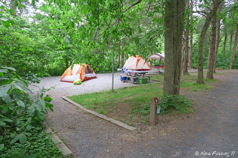 View Of Primitive Tenting Area (in Separate Area Of The Park By The River).  These Were Lovely, Spacious And Very Quiet. This Is Tent Area #4.