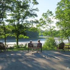 RV Campground Review  – Shore Hills Campground, Boothbay, ME